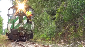 Engineer Uses Chain Saw To Clear The Tracks!