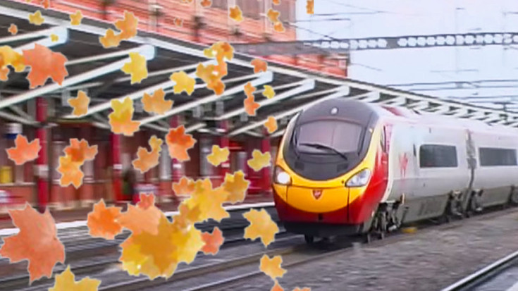 Leaves, Train's Worst Enemy! | Train Fanatics Videos