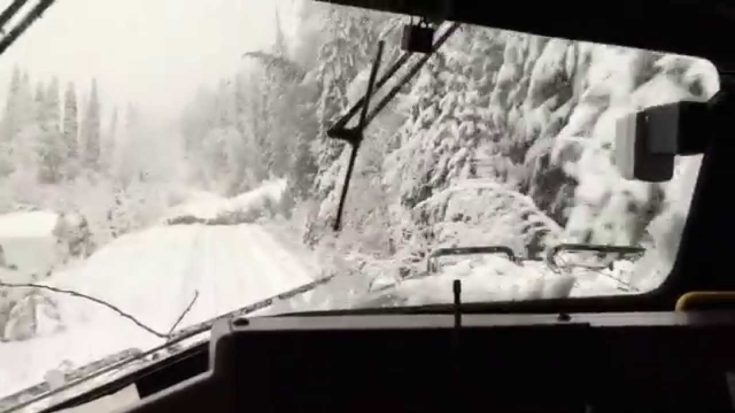Wild Ride! Snow Covered Tracks, Fallen Trees! | Train Fanatics Videos