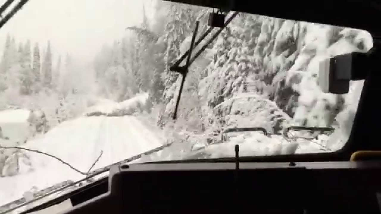 Wild Ride Snow Covered Tracks Fallen Trees Train Fanatics