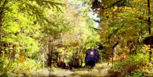 Catskill Mountain Railroad Bad Tracks Ride