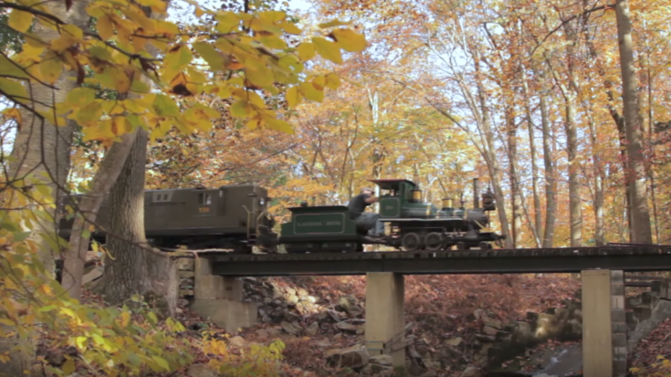 "15 "" Gauge Perfect For Your Back Yard! 