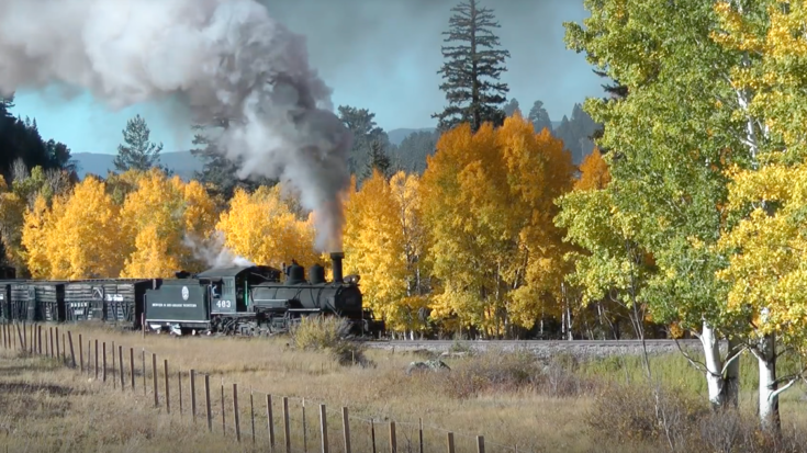 1940's Livestock Special On The C & T Scenic Railroad! | Train Fanatics Videos