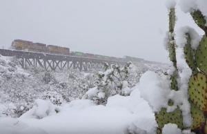 Blizzard Conditions For UP Intermodal