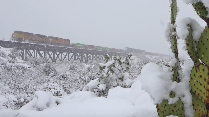 Blizzard Conditions For UP Intermodal | Train Fanatics Videos