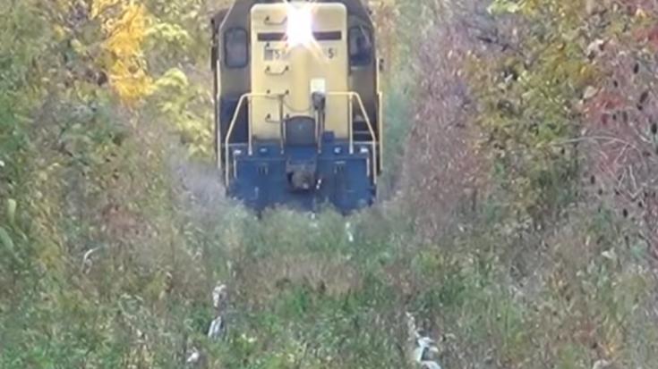 Cutting Through the Weeds – Bad Tracks | Train Fanatics Videos