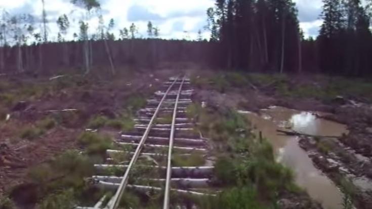 Russian Logging Railroad Built On Logs | Train Fanatics Videos
