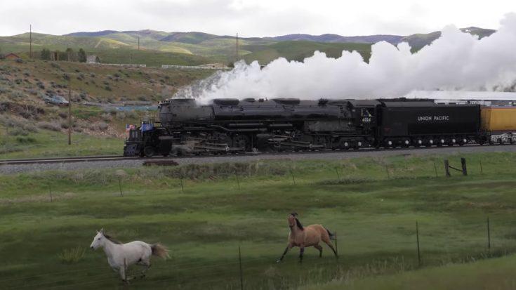 Two Iron Horses Versus Two Horses | Train Fanatics Videos