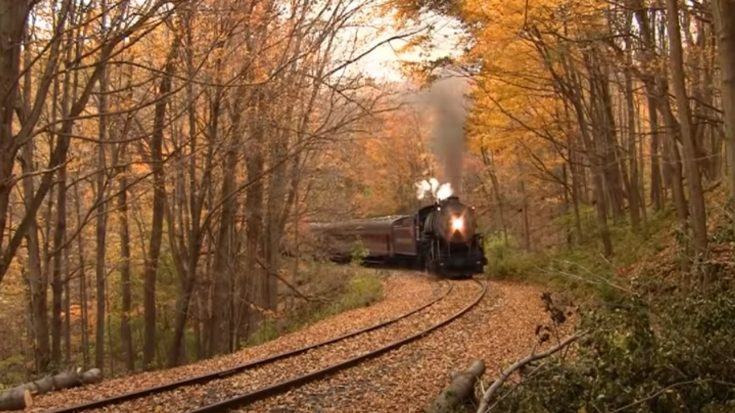 Spectacular Fall Colors With WMSR #734 | Train Fanatics Videos