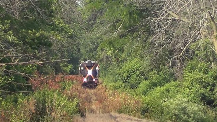 Wabash Central CNUR 7 Weed Running | Train Fanatics Videos