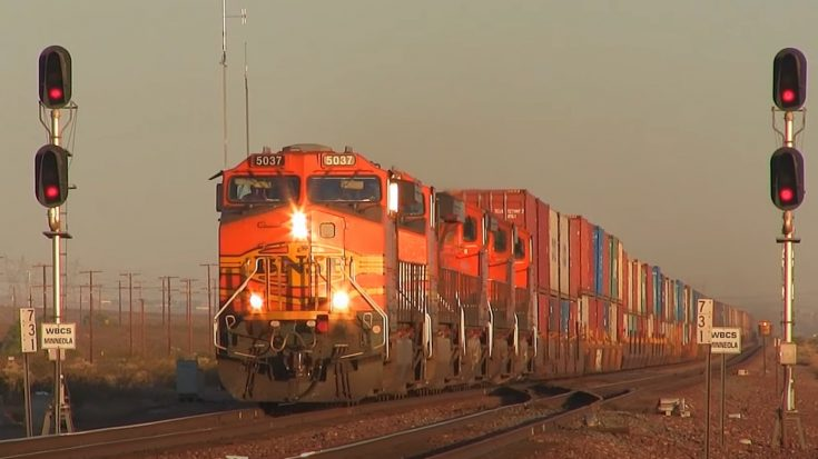 Tons Of BNSF Freight | Train Fanatics Videos